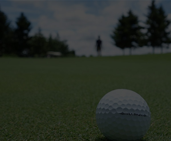 Addicts golfing - Banner
